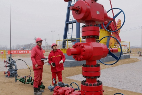 Chinese oil majors backtrack on pledge to buy Iranian oil